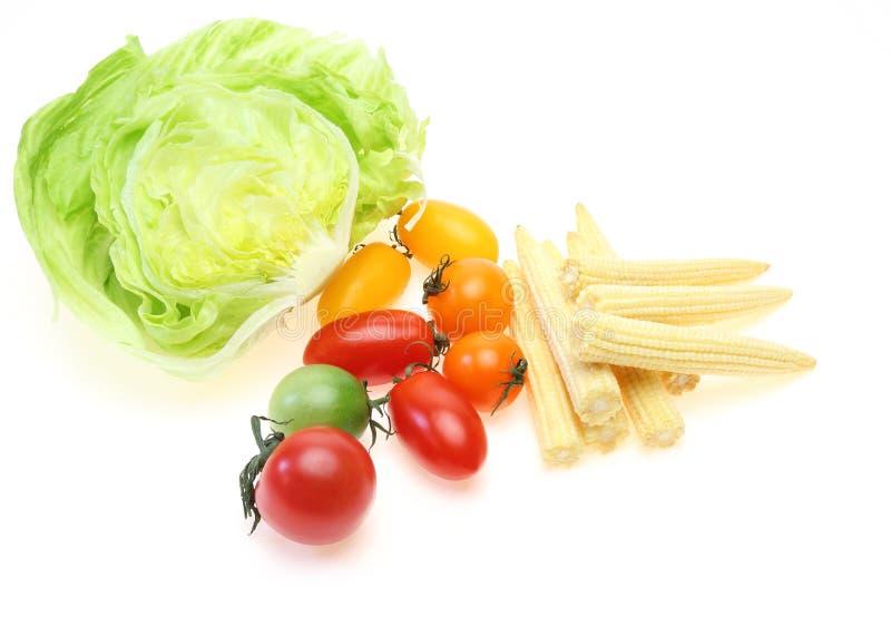 Овощи для салата в белой предпосылке стоковые изображения
