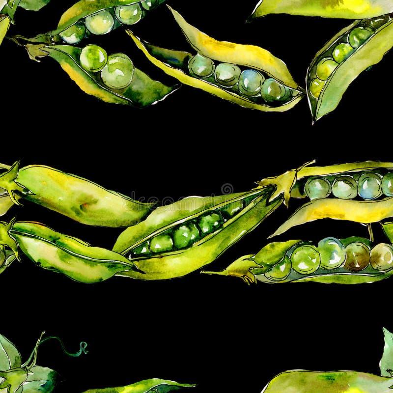 Овощи SED гороха одичалые в акварели вводят картину в моду стоковые изображения