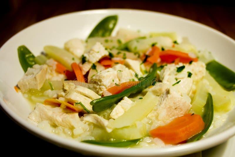 овощи stew весны цыпленка стоковое изображение