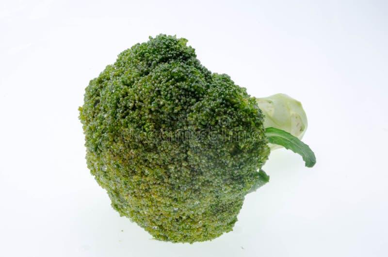 Овощ брокколи изолированный на белой предпосылке стоковая фотография
