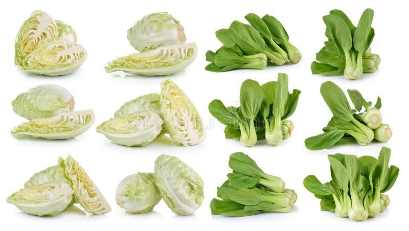 Овощ капусты и Bok choy на белой предпосылке стоковые фото