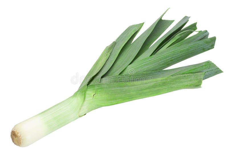 Овощ лук-порея на белизне стоковое изображение rf