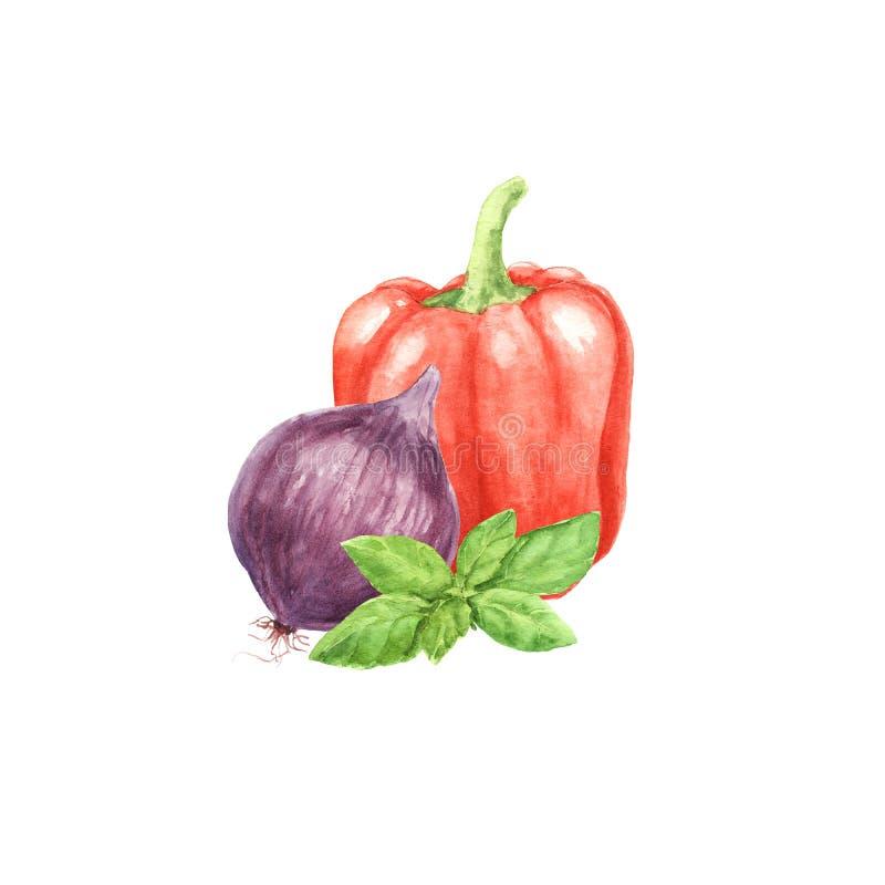 Овощ паприки акварели с зелеными лист базилика и сладким пурпурным луком изолированными на белой предпосылке иллюстрация штока