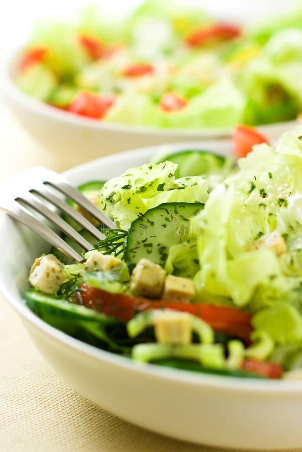 овощ салатов стоковое изображение