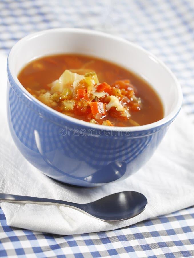 овощ супа страны стоковая фотография