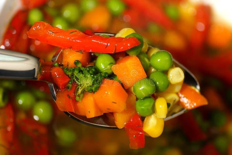 овощ супа стоковые изображения rf