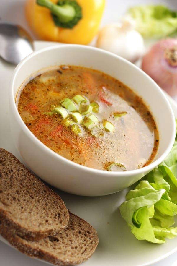 овощ супа стоковое изображение rf