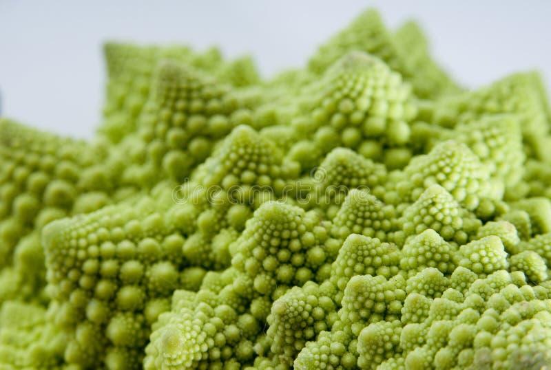 овощ фрактали стоковое изображение rf