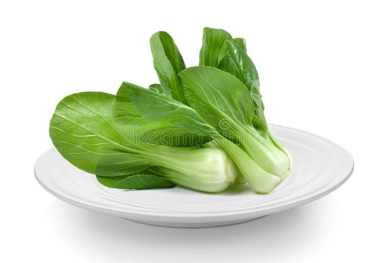 Овощ Bok choy в белой плите на белой предпосылке стоковая фотография