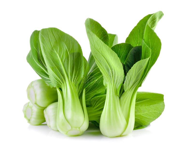 Овощ Bok choy на белой предпосылке стоковое изображение rf