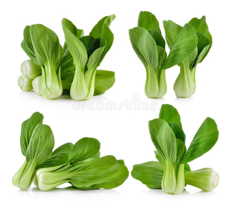 Овощ Bok choy на белой предпосылке стоковые изображения