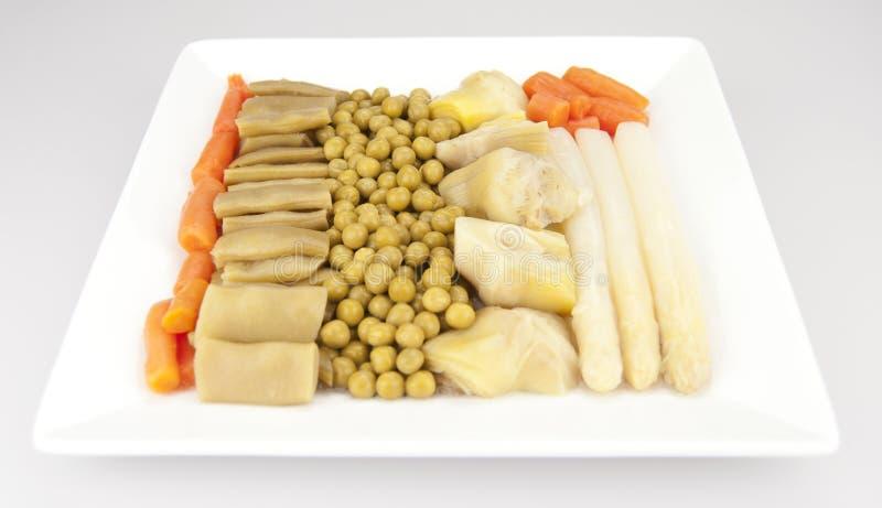 Овощ Stew стоковая фотография rf