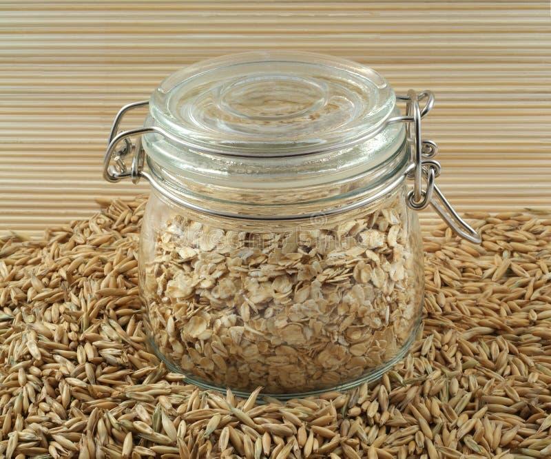 овсы oatmeal стоковые изображения