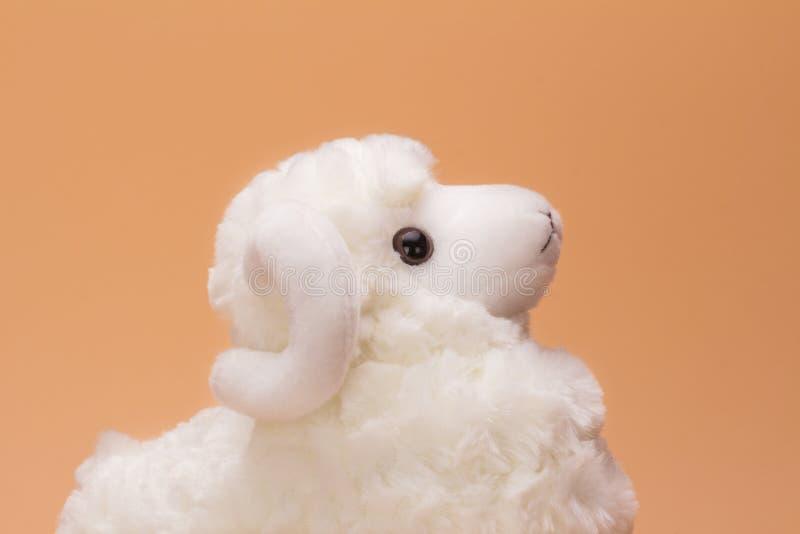 Овцы игрушки плюша стоковая фотография rf