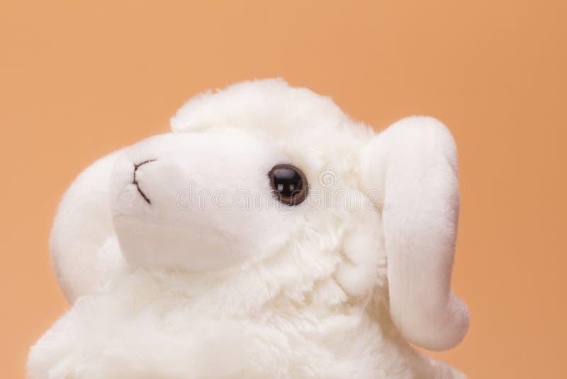 Овцы игрушки плюша стоковое фото