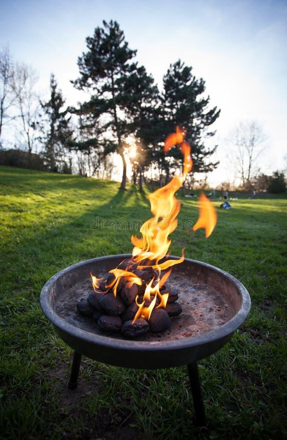 Огонь барбекю стоковое фото rf