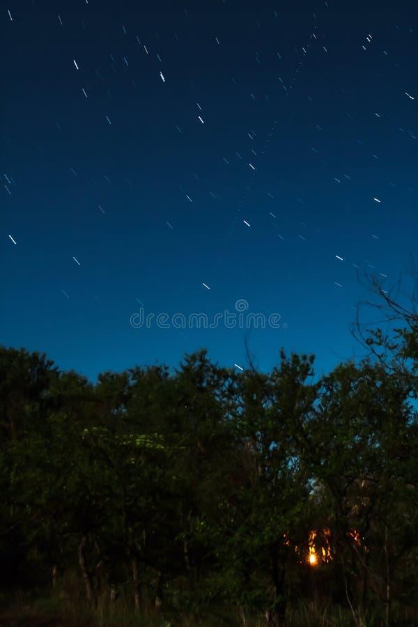 Огонь горит внутри леса в ноче полнолуния с следами звезды созвездия майора Ursa стоковое фото