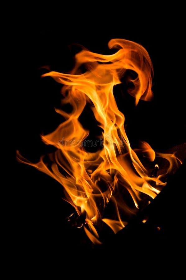 Огонь гриля на черноте стоковые фотографии rf