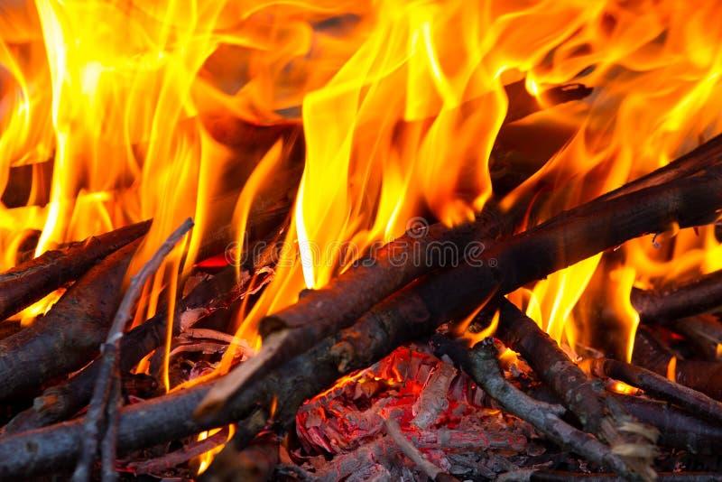 Огонь и тлеющие угли стоковое изображение rf