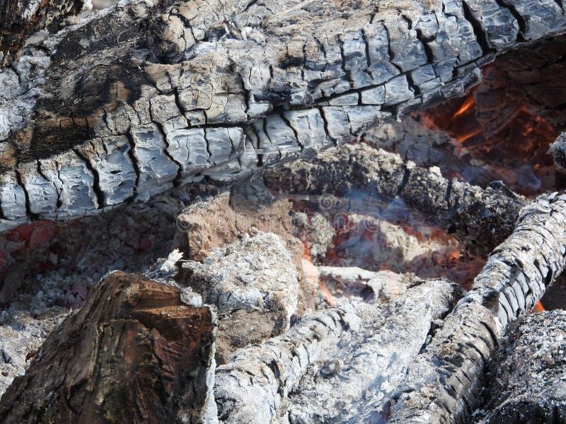 Огонь около огня, тлея дерево Предпосылка, концепция текстуры стоковое фото