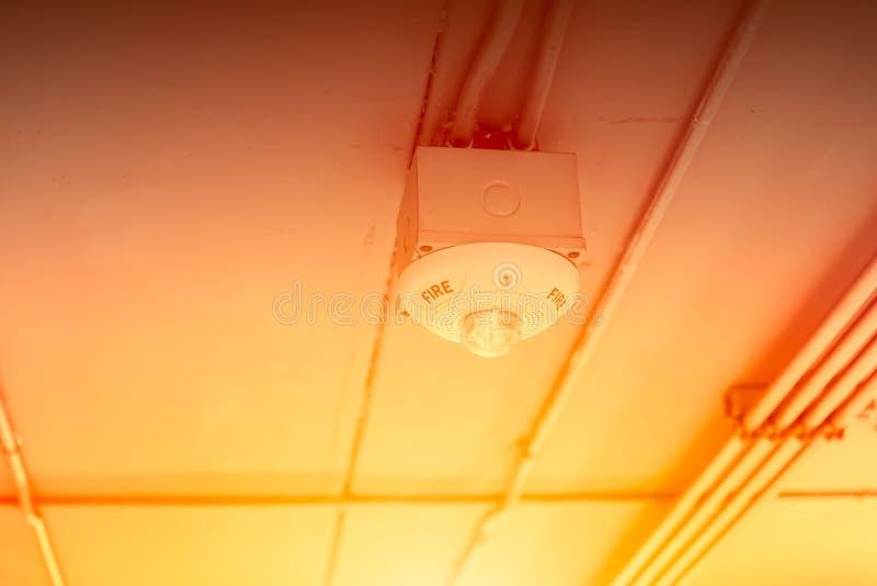 Огонь прибора детектора пламени горячие и датчик дыма на крыше потолк стоковая фотография
