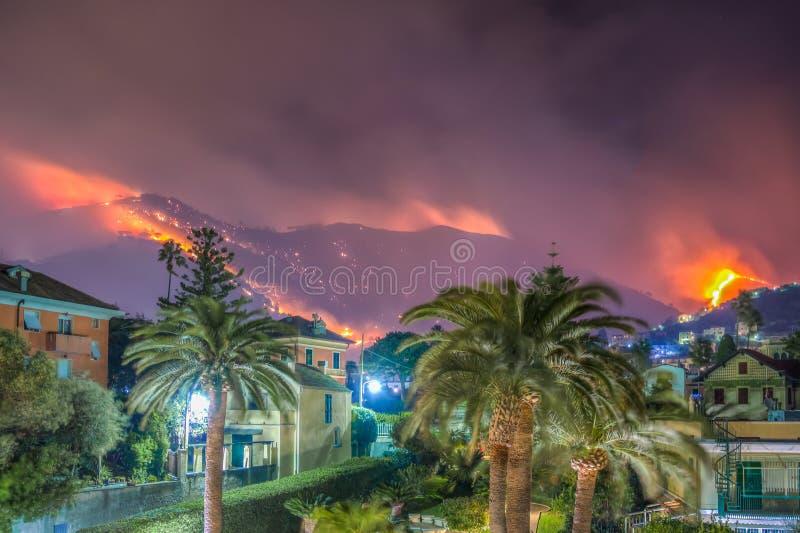 Огонь причиненный засухой стоковое изображение rf