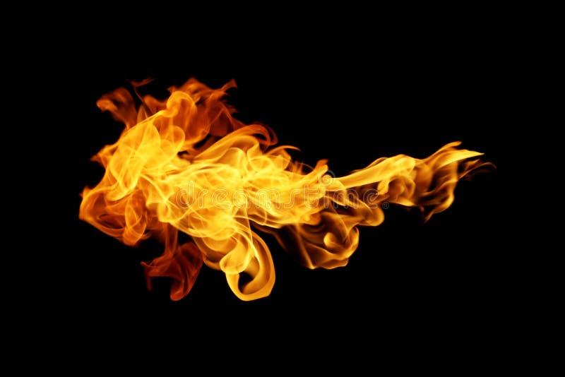 Огонь пылает собрание изолированное на черной предпосылке стоковые изображения