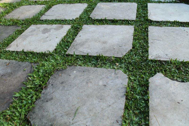 Огородите 1-й вариант дома загородки, старого и мшистых стоковое изображение
