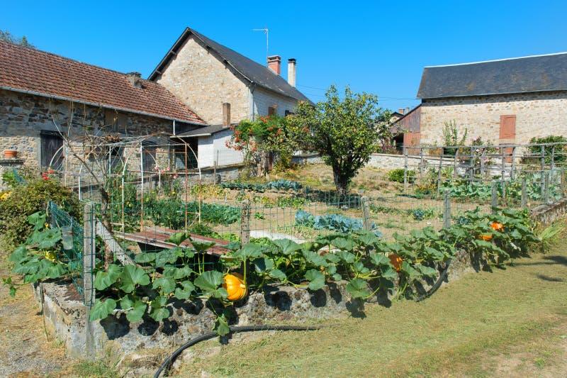 Огород в французской деревушке стоковые фотографии rf