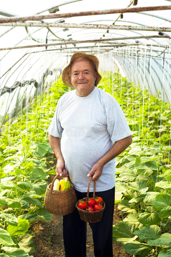 Download огород пожилого человека стоковое фото. изображение насчитывающей рудоразборка - 33728050