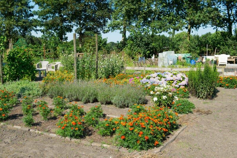 Огород с цветками в лете стоковые фото