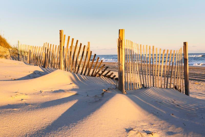 Ограждать эрозии пляжа Северной Каролины стоковые изображения rf