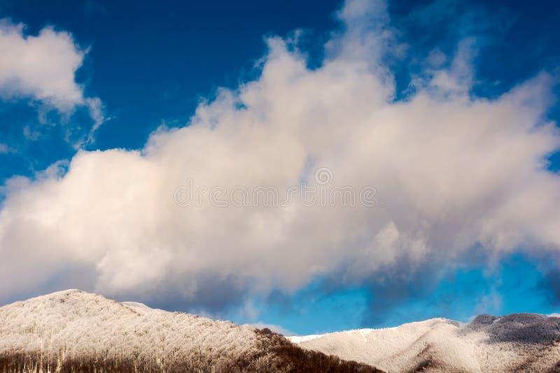 огромное пушистое облако над заросшим лесом холмом в снеге стоковое фото