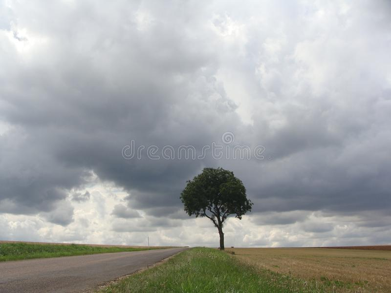 одинокий вал стоковая фотография rf