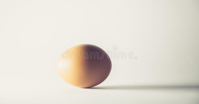 Одиночное коричневое яйцо изолированное от белой предпосылки Концепция стоковая фотография rf