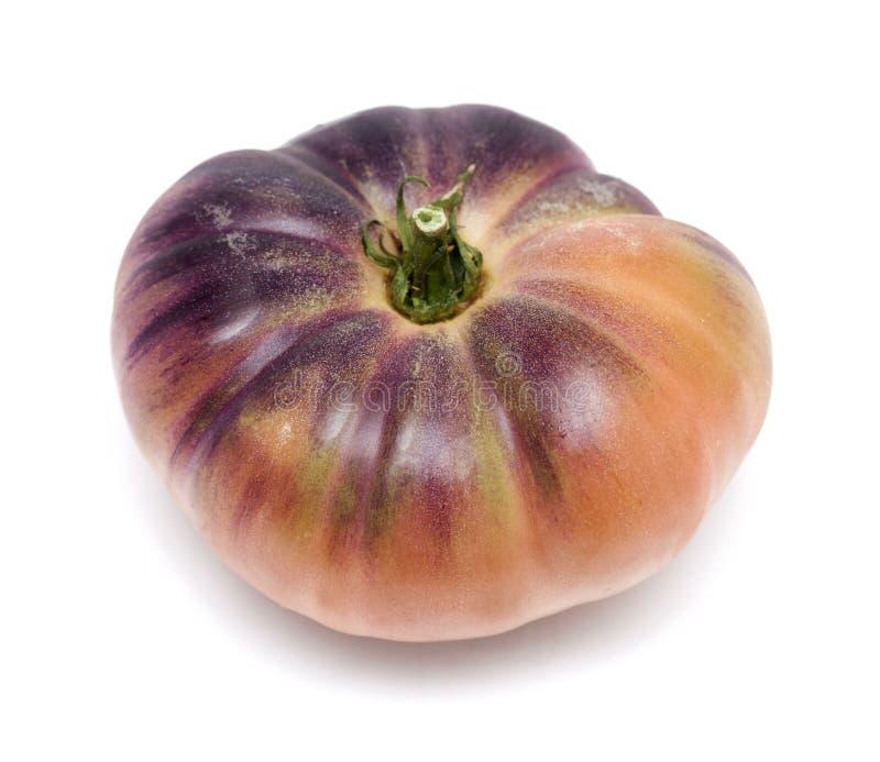 Одиночный голубой томат стоковое фото rf