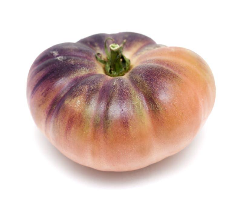 Одиночный голубой томат стоковое изображение rf
