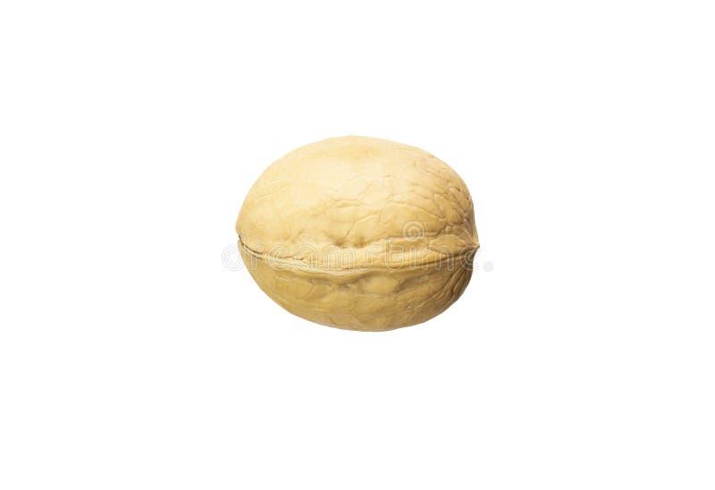 Одиночный грецкий орех изолированный на белой предпосылке стоковое изображение rf
