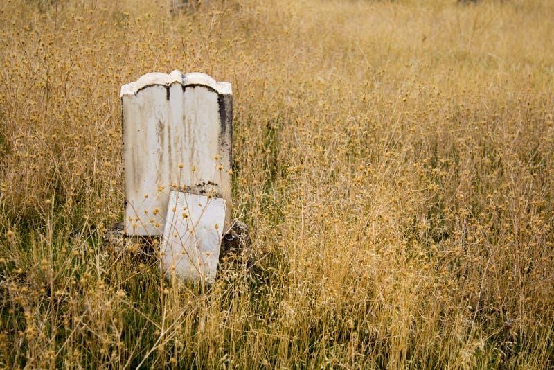 Одиночный могильный камень самостоятельно в засорителях в старом кладбище стоковая фотография