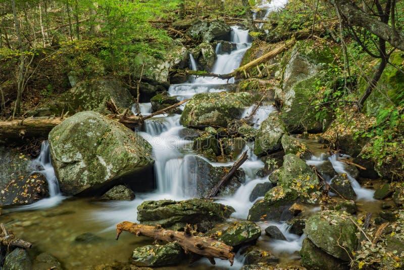 Один из много красивых водопадов следом падений Crabtree стоковое фото