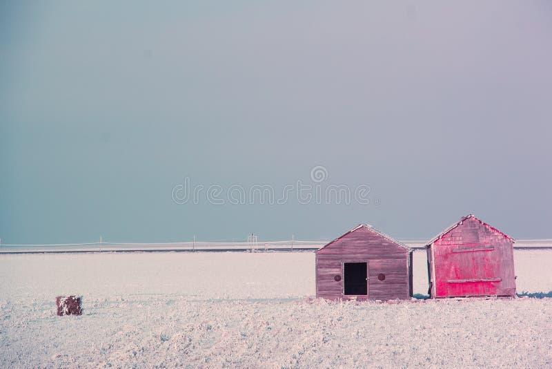 Один красный сарай стоковые фотографии rf