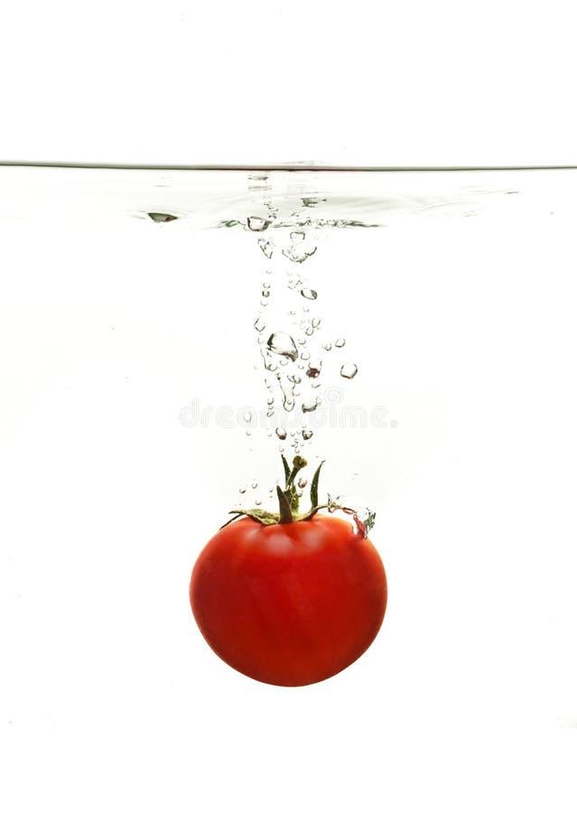 один томат выплеска стоковое фото
