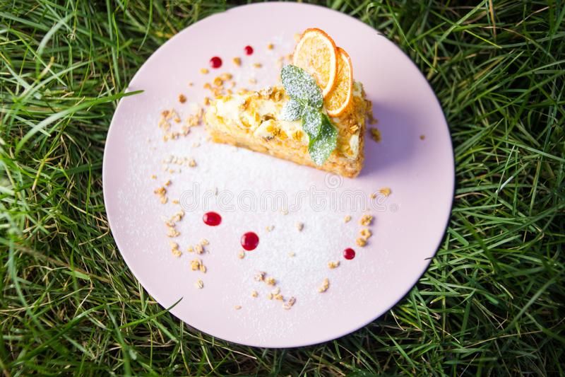 Один торт с мятой стоковые изображения rf