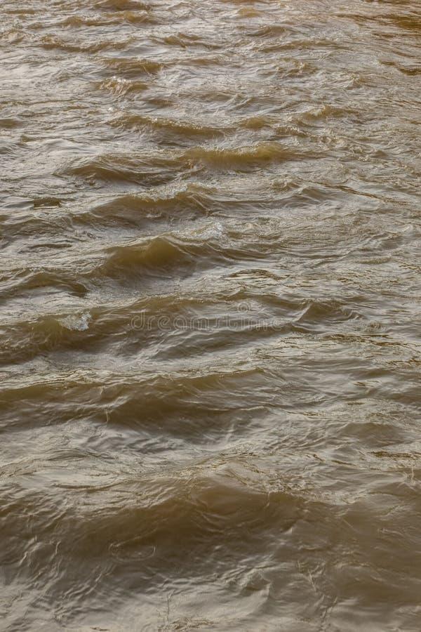 Одичалое река на уровне воды полной воды стоковые фото