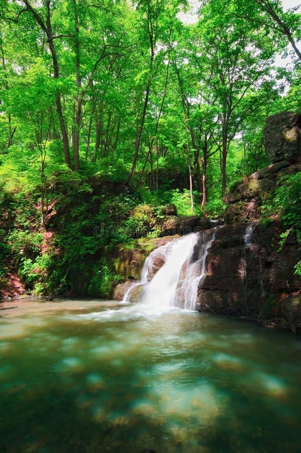 Одичалое река 4 стоковые фото