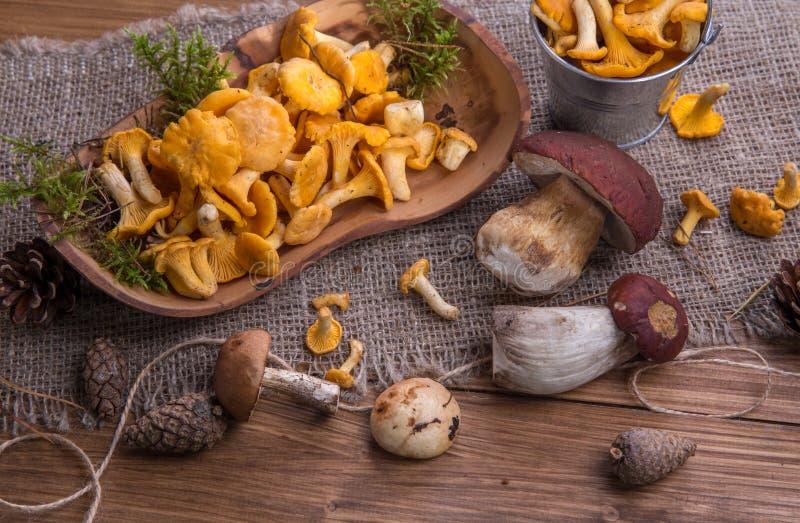 Одичалые свежие грибы на деревенском деревянном столе Лисички, подосиновик, сыроежка Copyspace стоковые фото
