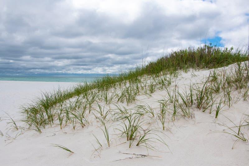 Одичалый ландшафт дюны на национальном Seashore стоковое изображение