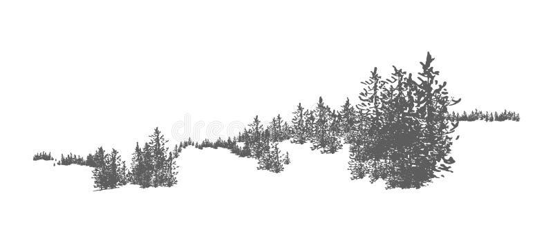 Одичалый coniferous ландшафт леса при спрус, сосна или ели нарисованные рукой растя на холмах Панорама полесья Элегантный бесплатная иллюстрация