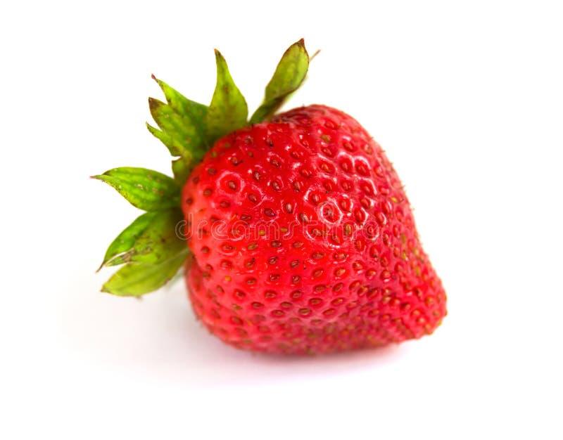 Одна красная ягода клубники с листьями на белой предпосылке стоковая фотография rf