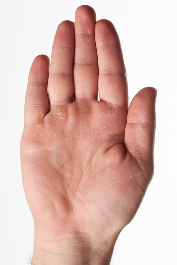 Одна ладонь руки работника стоковые изображения rf